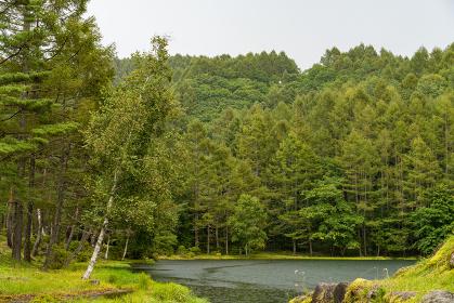 長野信州_御射鹿池