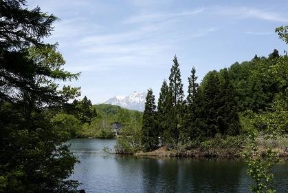 希望湖(のぞみこ)