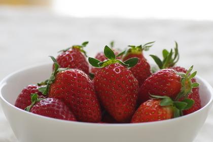 赤く熟した採れたてのイチゴ