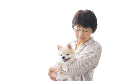 犬を買うシニア女性