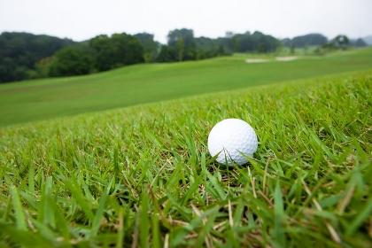 ラフ上のゴルフボール