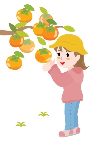 柿狩りをする女の子