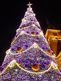 ポーランド・クラクフの中央市場広場にてクリスマスツリーのライトアップイルミネーション