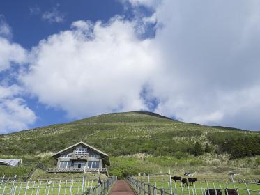 八丈富士牧野ふれあい牧場から見上げた八丈富士 3月