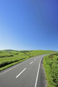 宗谷丘陵の道