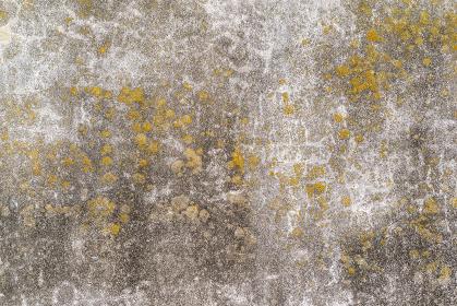 ひび割れて苔の生えたコンクリートの壁 テクスチャ
