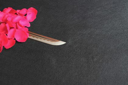 バラの赤い花びらと居合練習刀の刀身