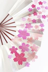 扇子と桜和紙のテクスチャ