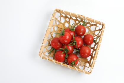 かごに盛られた採れたてプチトマト