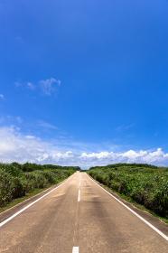 沖縄県宮古島、東平安名崎の道・日本