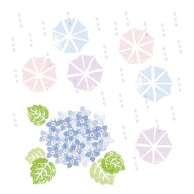 梅雨の季節、ブルーの紫陽花の花と傘