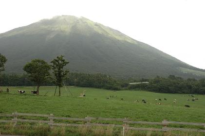 Mountain;pasture