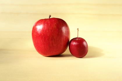 並んだリンゴと姫リンゴ 3