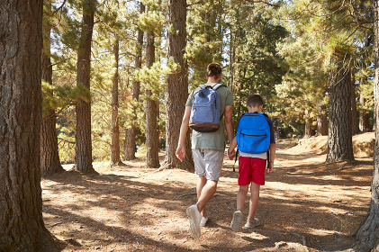 Rear View Of Father And Son On Hiking Adventure Through Forest