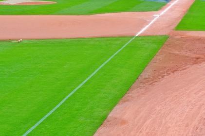 屋外野球場 緑の芝生
