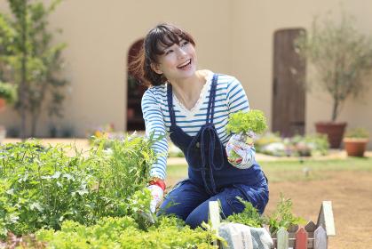家庭菜園で野菜を収穫する女性