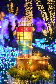 江の島ライトアップ