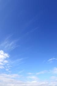 青空 18 秋の空 縦位置