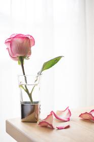 花瓶とピンク色のバラ