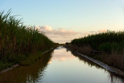日本最南端、沖縄県波照間島・2月の風景