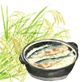 土鍋秋刀魚ごはん サンマ 新米 秋の味覚 料理 白背景 稲穂【水彩】