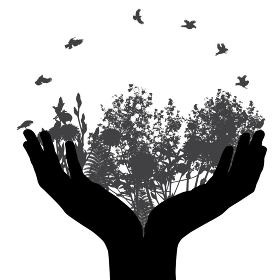 Set of Hand and Plant, Tree, Foliage Elements Silhouette Vector Illustration. EPS10. Set of Hand and Plant, Tree, Foliage Elements Silhouette Vector