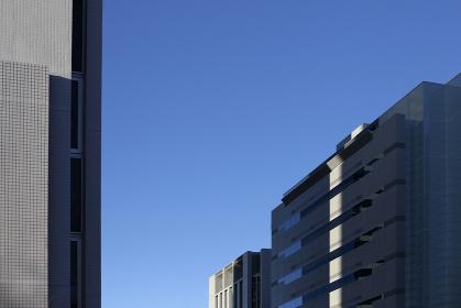 高層ビルのフォルムと光りと影