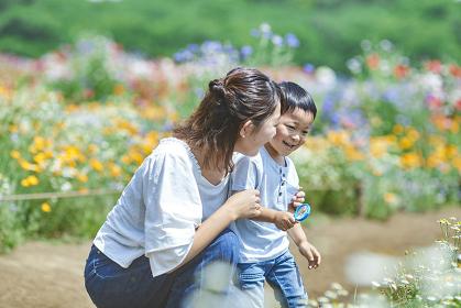 花を観察する日本人親子