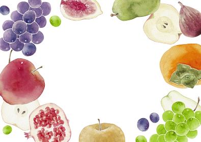 秋 果物 フルーツ 背景 フレーム 水彩 イラスト