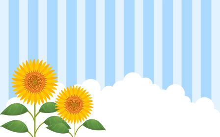 向日葵と入道雲とストライプ背景つきイラスト