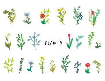 カジュアルなタッチ シンプルでナチュラルなボタニカル植物のイラストセット