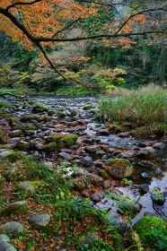 秋の山中温泉の鶴仙渓遊歩道からの眺め