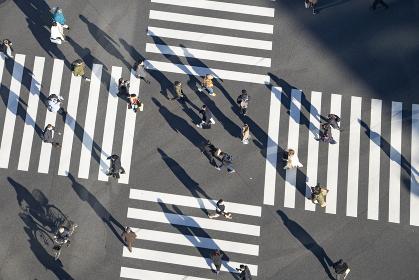 人々の行き交うスクランブル交差点