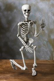 立ち上がろうとする骸骨