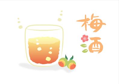 梅酒(Umeshu)・筆文字 挿絵 白背景