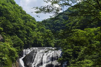 日本の滝百選の一つである袋田の滝