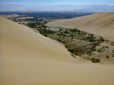 ペルー・イカ県の砂漠窪地で植物の生えたエリアの遠景写真