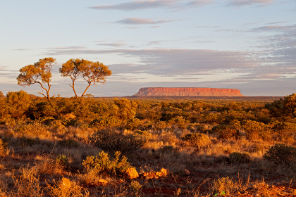 AUSTRALIA,AYERS ROCK-CIRCA  AUGUST 2017-the end of the day in ayers rock park
