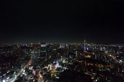 東京タワーと東京スカイツリー(ライトアップ・夜景)