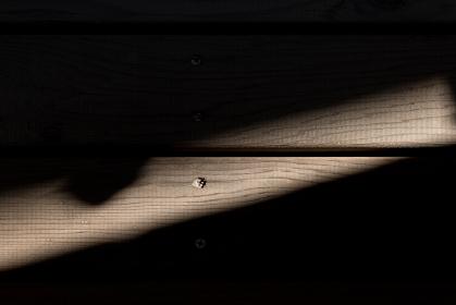 木の床に光が差し込んでいる写真