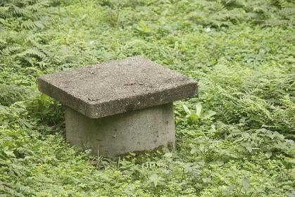 蓋をした畑の野井戸