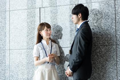 ビジネス状況・稲田石(高級壁材)の背景