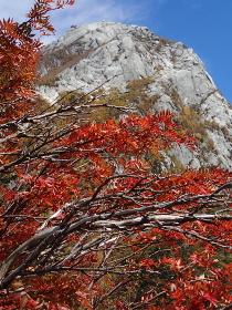 穂高岳屏風岩の秋