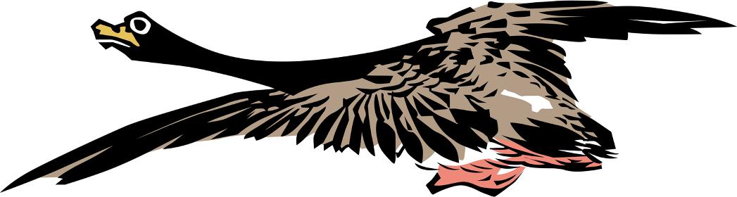 浮世絵 鳥 その18