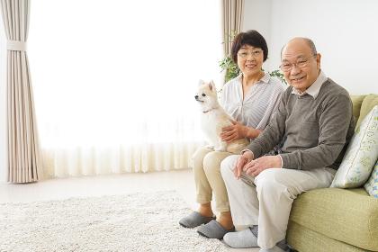 犬を飼うシニア夫婦
