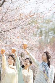 乾杯をする3人の女性