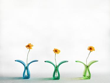 横に並んだプラスチッククリップに挟んだ黄色い花と白い背景のコピースペース