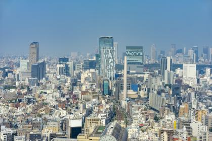 東京パノラマ 高層ビルから見る町並み