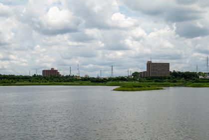 曇天の芝川第一調整池 埼玉県さいたま市