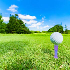 ゴルフ ティーショット 【 夏 レジャー 】